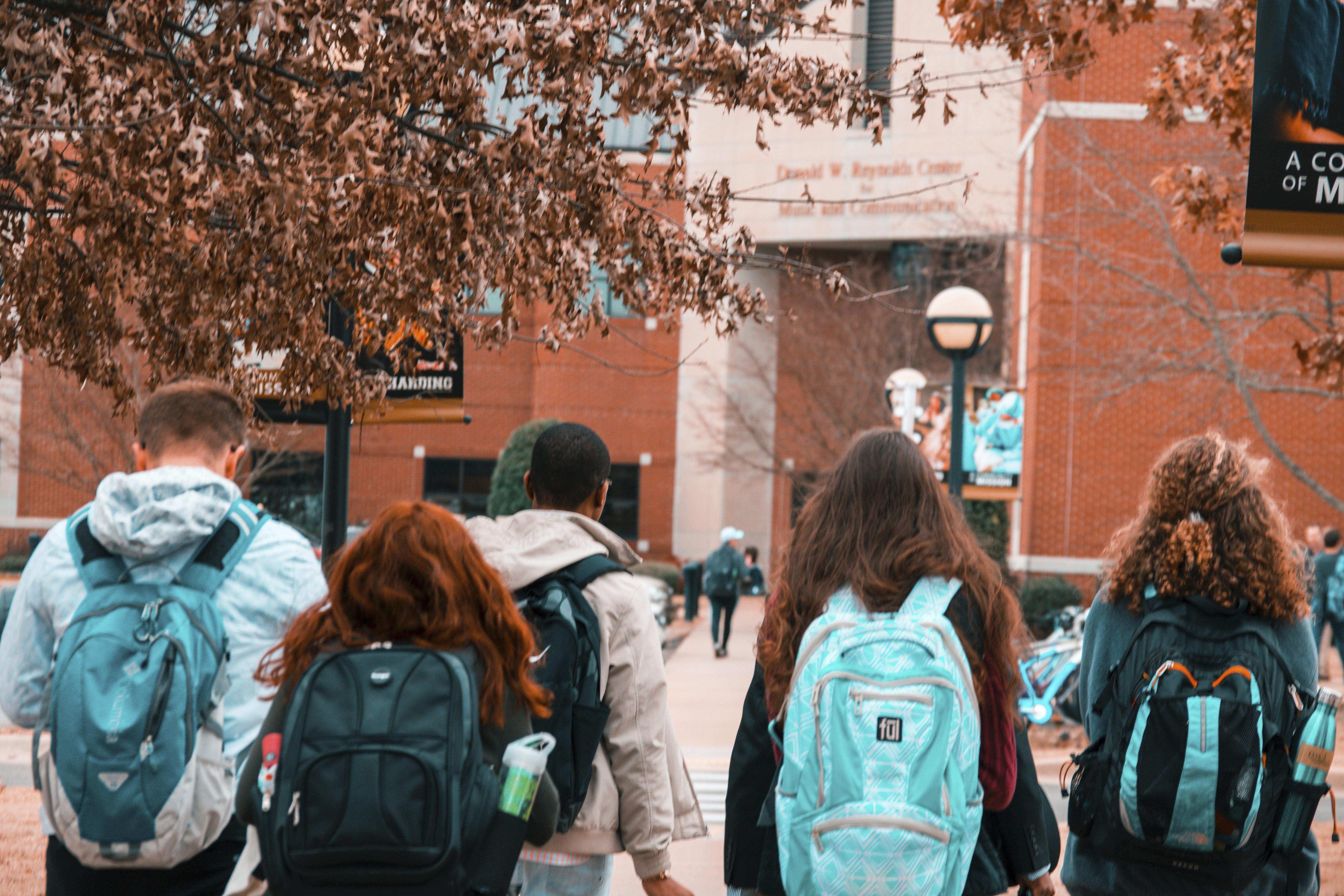 La massification des diplômesest-elle une démocratisation?