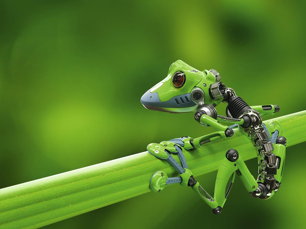 Innovation durable : comment la nature inspire les productions industrielles