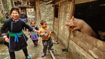 Chine : le « vlog » en vogue chez les agriculteurs
