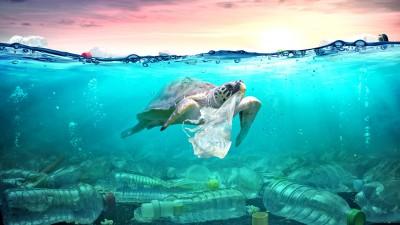 Les bioplastiques, une fausse bonne solution