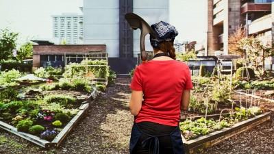 Job du futur ? Agriculteur urbain