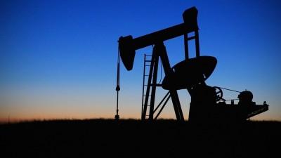 Éco-dicton. « Roi du pétrole »