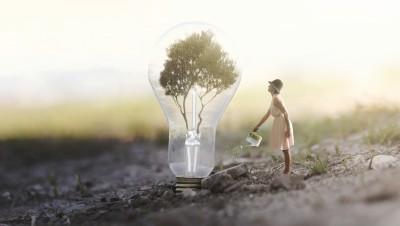 Éolien, solaire, géothermie…Le pari de l'énergie verte bouleverse le réseau électrique