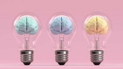 Psychologie évolutionniste contre sociologie,un duel idéologique malvenu ?