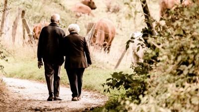 Les retraités sont-ils moins bien lotis que les actifs ? En moyenne, c'est faux !
