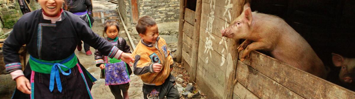 Chine: le «vlog» en vogue chez les agriculteurs