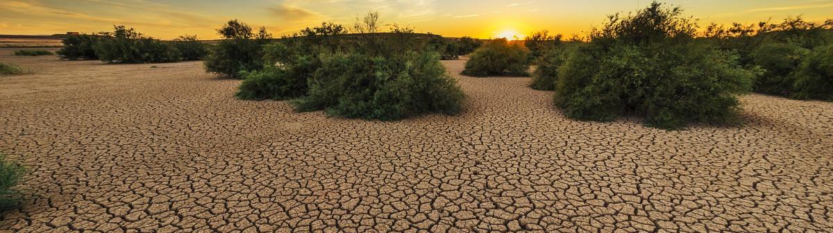 10 actions pour enrayer le réchauffement climatique