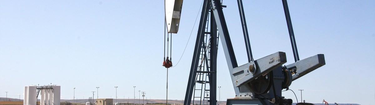 Organisation des pays exportateurs de pétrole (OPEP)