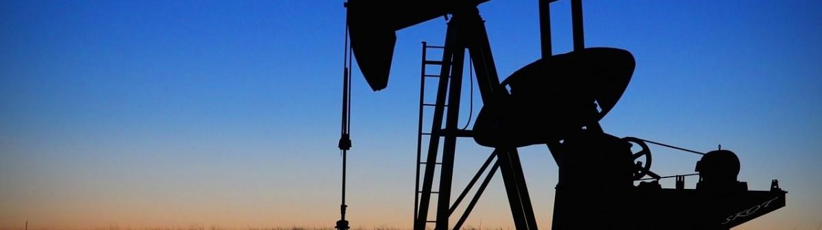 Éco-dicton. «Roi du pétrole»