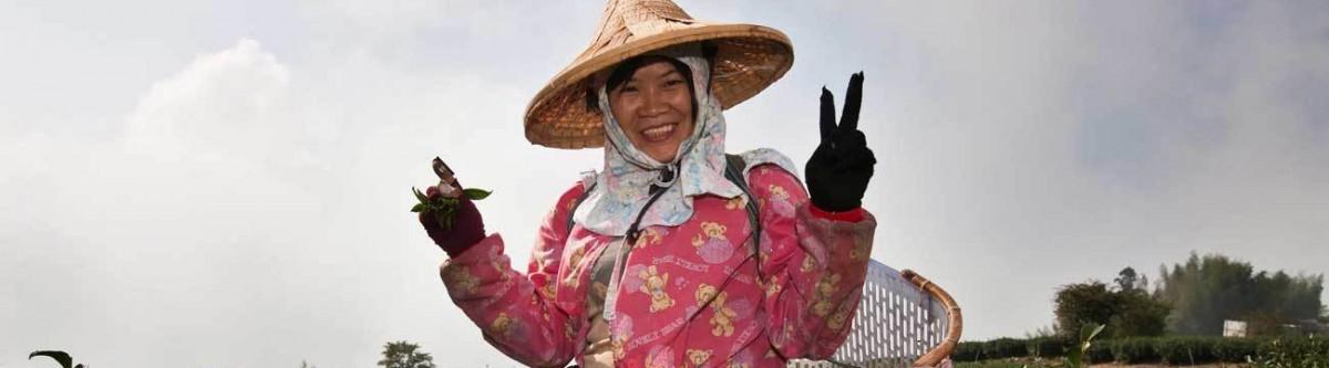 Finlande, Costa Rica, Taïwan : trois pays, trois visions du bonheur
